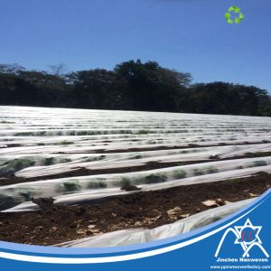 PP Spunbond Nonwoven Fabric with Anti-UV Protector for Agriculture Cover pictures & photos