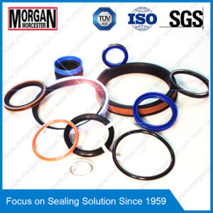 Varied High Quality Viton/PTFE/Nitrile/Silicone Rubber Seal Ring pictures & photos