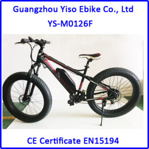 500W 750W Electric Fat Bike Snow Beach Bike pictures & photos