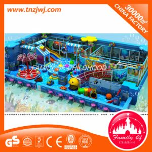 Family of Childhood Ocean Theme Kids Indoor Maze Play Equipment for Sale pictures & photos