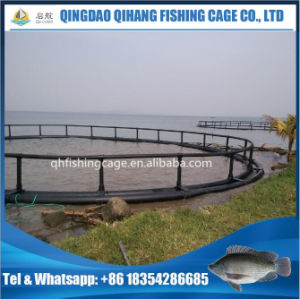 Circular HDPE Fish Farming Net Cage Floating for Groupers pictures & photos