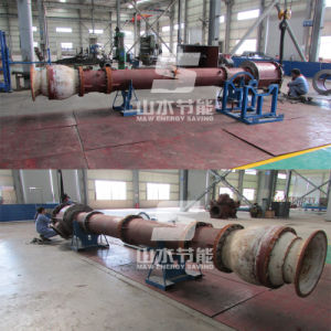 API610 Standard Vs1 Vertical Petrochemical Centrifugal Pump pictures & photos