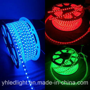 Warm White 3000k 4000k Bright LED Rope Strip Light pictures & photos