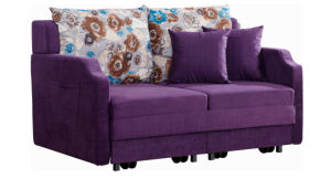 Special Functinal Fabric Sofa Bed for Living Room pictures & photos