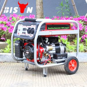 Bison (China) BS2500e Factory Price Copper Wire Portable Gasoline Generator pictures & photos