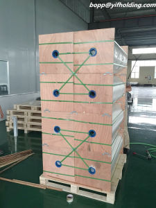 VMCPP /Metallized CPP Film Mcpp for Food Packaging Rolls pictures & photos