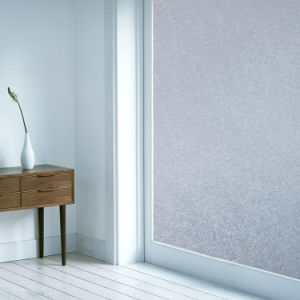 Static Cling Window Film 2D Series-S901 pictures & photos