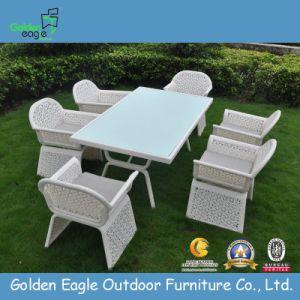 Syhthetic /Plastic Furniture Dining Set