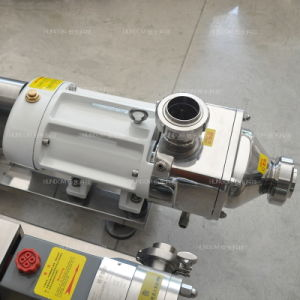 Stainless Steel Horizontal Twin Screw Pump for Cosmetic pictures & photos