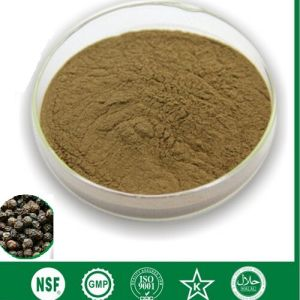 GMP Black Pepper Extract Piperine > 90%, 95%, 98% OEM