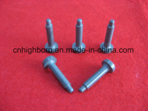 Silicon Nitride (Si3N4) Guide Pin pictures & photos