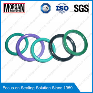 As568 Standard Imperial Viton/EPDM Rubber O-Ring pictures & photos