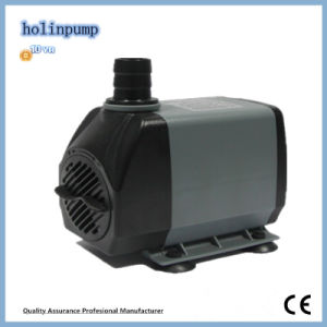 Submersible Water Pump Garden Pumps (Hl-1500) Water Pump Check Valve pictures & photos