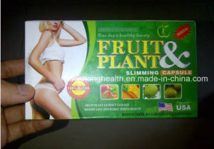 Original Fruit & Plant Weight Loss Slimming Product pictures & photos