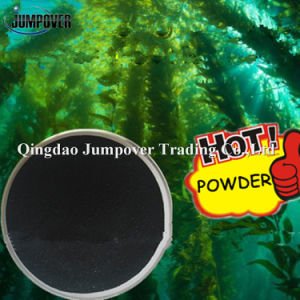 100% Water Soluble Black Seaweed Extract Powder pictures & photos