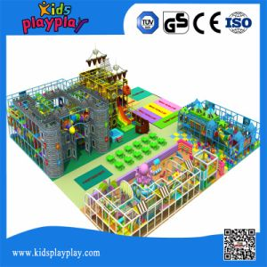Children Indoor Naughty Castle with Multi Function for Spare Time Family Fun Center pictures & photos