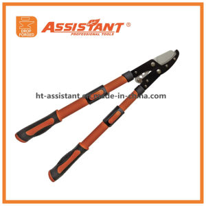 Telescoping Lopping Shears Compound Powergear Anvil Loppers pictures & photos