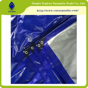 China Factory Produces China PE Tarpaulin with UV Protection Top554 pictures & photos