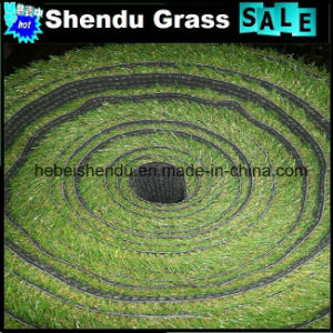 25mm Monofilament Artificial Lawn for Gallary Decoration pictures & photos