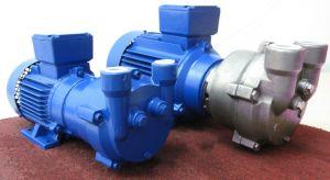 2BV2 070 Liquid Ring Vacuum Pump pictures & photos