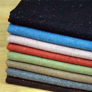Colorpoints Wool Fabric for Clothing, Flannel Fabric, Suit Fabric, Garment Fabric, Textile Fabric pictures & photos
