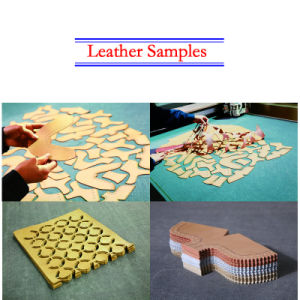 Dual-Head CNC Leather Cutting Machine for Leather Goods pictures & photos