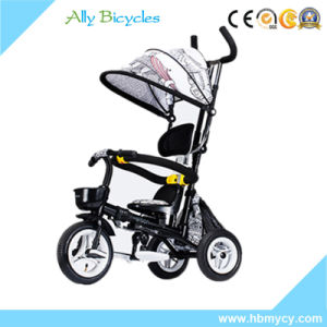 Colourful Canopy Baby Trike with Push Bar /Compact Children Tricycle for Toddlers pictures & photos