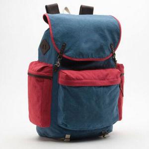 Custom Cavans Backpack Bag pictures & photos