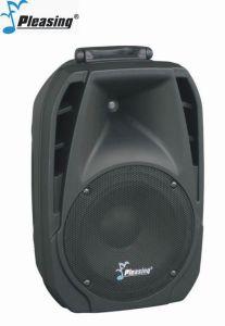 LCD Portable Amplifier Professional Speaker Pl-933 pictures & photos