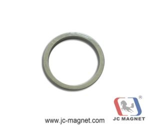 Rare Earth Sintered Ring NdFeB Magnet pictures & photos