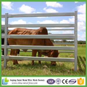Cheap Hot DIP Galvanized Livestock Cattle Panel for Australia Price pictures & photos