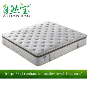 Hot Sell Enjoyable Hotel Pocket Spring Wholesale Mattress (ZRB-871)