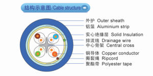 FTP CAT6 Ethernet LAN Cable with High Quality From Cable Manufacturer pictures & photos