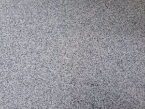 Grey Granite Tile & Granite Slab (G603, G623, G636, G654) pictures & photos