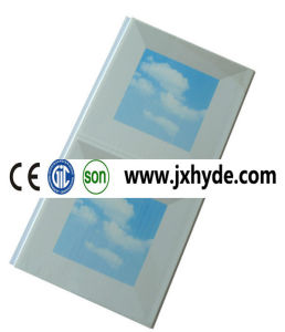 250*6*2950mm Cheap Price Light PVC Ceiling Panel China Supplier (RN-179) pictures & photos