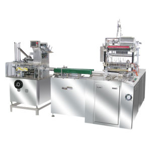 Sy-125 Biscuit Auto Box Cartoner (cartonning machine for bottles) pictures & photos