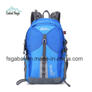 Camle Mountain Sports Hiking Outdoor Travel Camping Daypack Bag Backpack pictures & photos