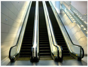 3 Flat Step Public Escalator for Metro Station (XNF-028) pictures & photos