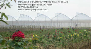 100% HDPE Agricultural Anti Insect Netting Greenhouse Net pictures & photos