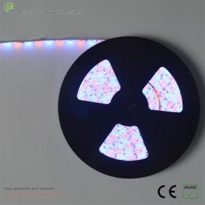 LED Flexible 12V 3528 LED Strip Kit