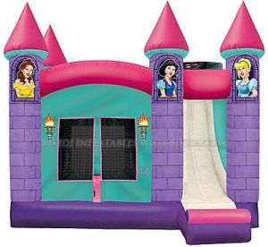 Inflatables, Inflatable Castle Slide Combo (B3004) pictures & photos