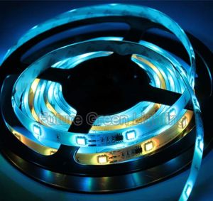 RGB LED Strip Light with IC for Above 130 Kind of Color Changing pictures & photos