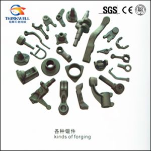 High Quality OEM Special Customised Kinds of Forging Auto Part pictures & photos