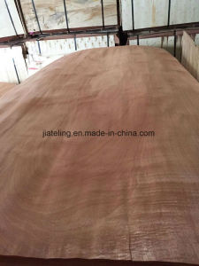 Solomon Veneer pictures & photos