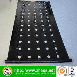 UV Protection PE Film UV Resistant Plastic Film pictures & photos