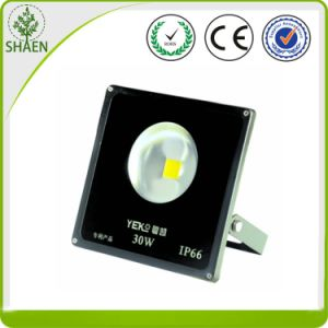 High Power 30W LED Flood Light with Lens pictures & photos