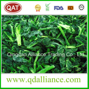IQF Frozen Organic Diced Cut Spinach From 2016 Crop pictures & photos