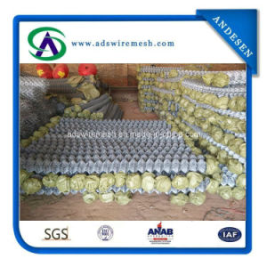 Galvanized 50X50mm 100X100mm Chain Link Fence pictures & photos