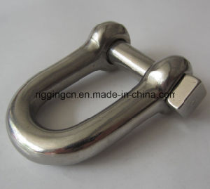 Customized Special Size Width D Shackle in Ss 316 pictures & photos