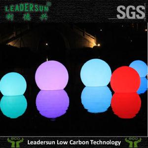 Decoration Indoor Outdoor Lighting LED PE Ball Light (LDX-B01)
